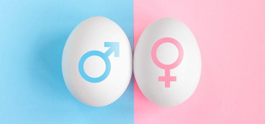 płeć dziecka, od czego zależy płeć, jak zaplanować płeć